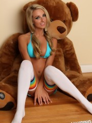 Bears And Bikinis