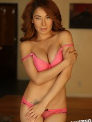 alluringvixens-lilly-inalittlepink-003